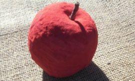 Como Fazer Fruta para Decoração