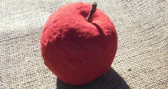 Read more about the article Como Fazer Fruta para Decoração