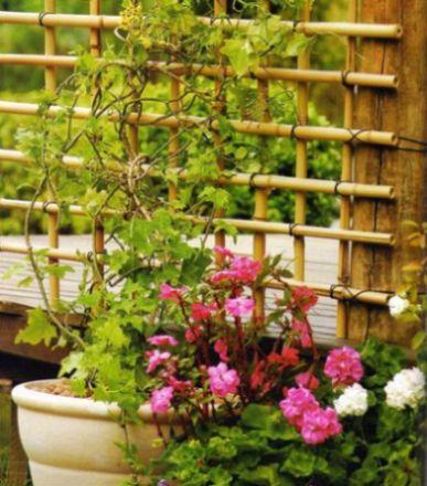 Read more about the article Como Fazer Cerquinha de Bambu
