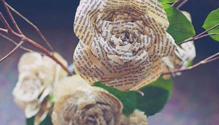 Read more about the article Como Fazer Rosas de Jornal Velho