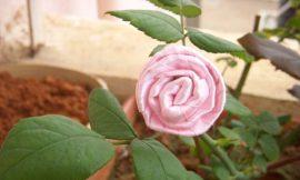Como Fazer Rosa de Fita Fácil