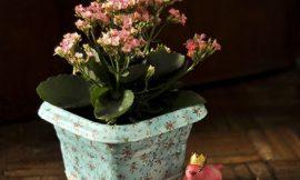 Como Decorar Vasos de Planta Simples