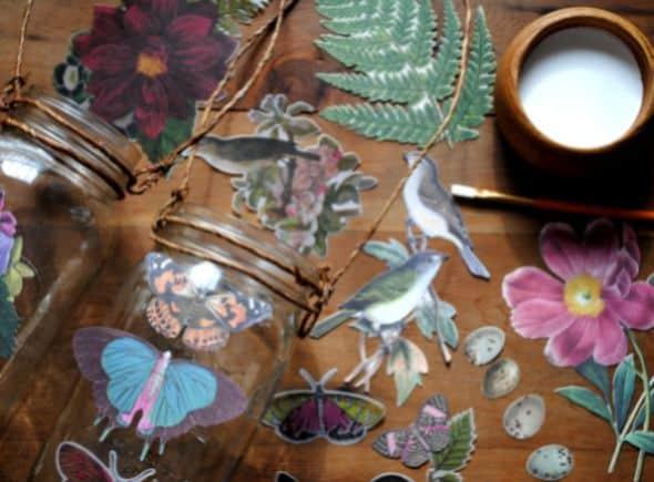 (Foto: gardenmama.typepad.com)