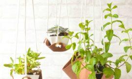 Como Fazer Suporte para Vasos de Plantas
