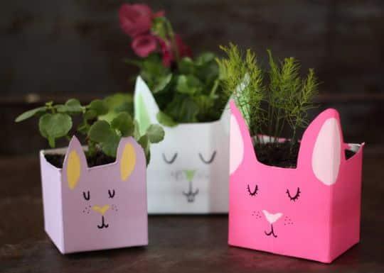 Read more about the article Como Fazer um Vaso de Plantas com Embalagem de Suco