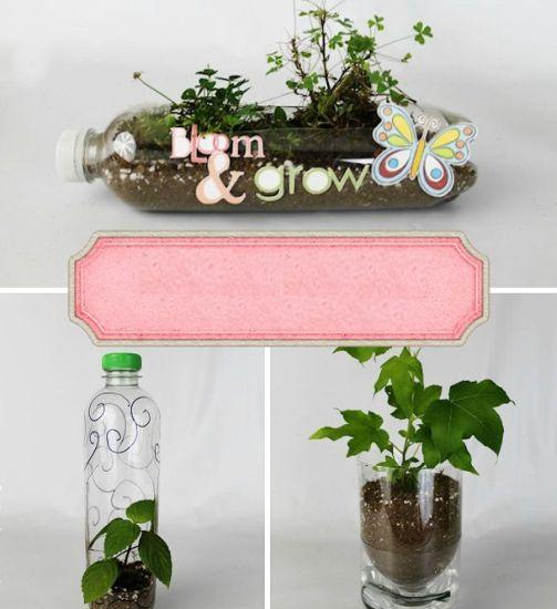 You are currently viewing Como Fazer Vasos de Plantas com Garrafa Pet
