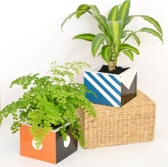 Read more about the article Como Fazer Cachepot para Plantas de Madeira