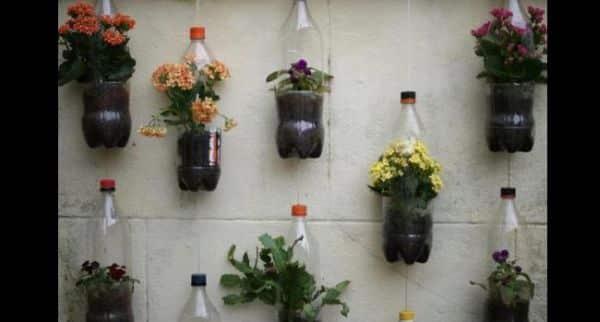 jardim com garrafa pet pendurada