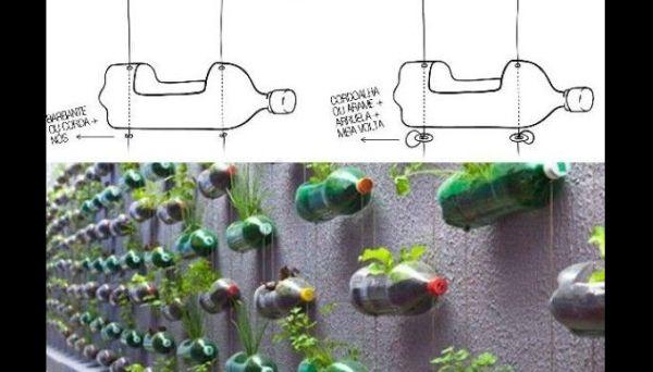 horta pendurada de garrafa pet