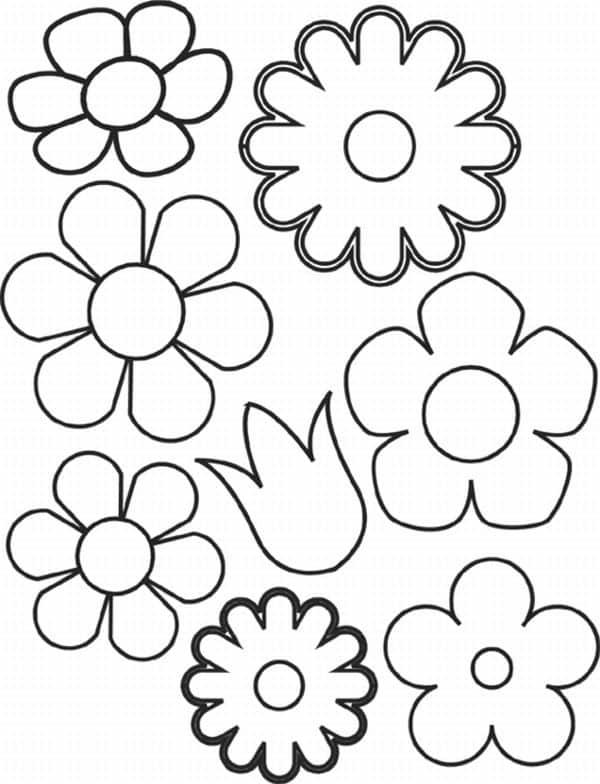 molde de flor variada