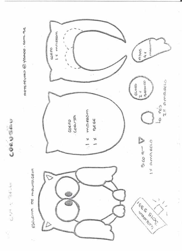 desenho de coruja com partes