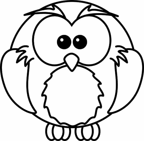 desenho de coruja com cd