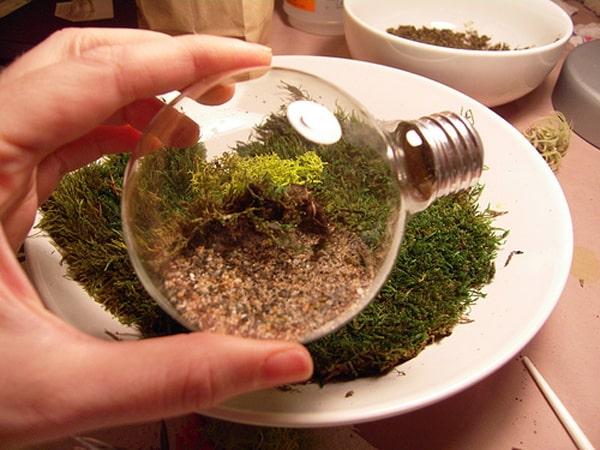 terrario na lampada com cascalho