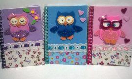 Cadernos Decorados com EVA: 30 Modelos