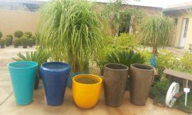 Como Fazer Vaso de Cimento Passo a Passo: 15 Ideias