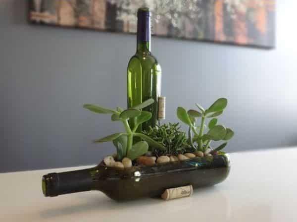 jardim com garrafa de vidro