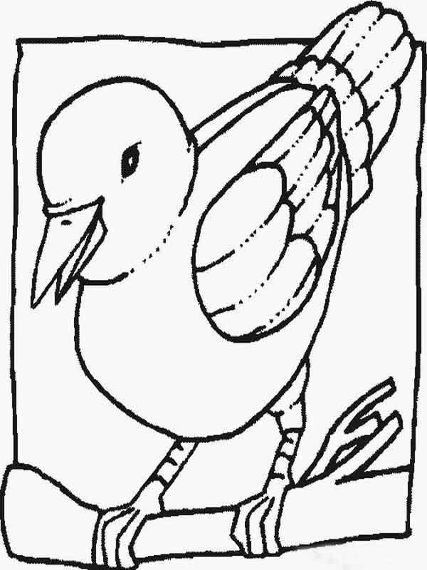 Pássaro pontilhismo