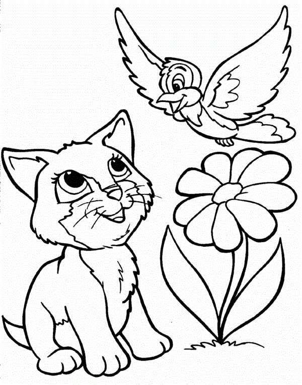 gato com flores e passaros para pintar