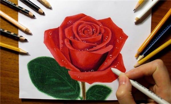 You are currently viewing Desenhos de Rosas para Imprimir: tatoo, realistas, pintura em tecido