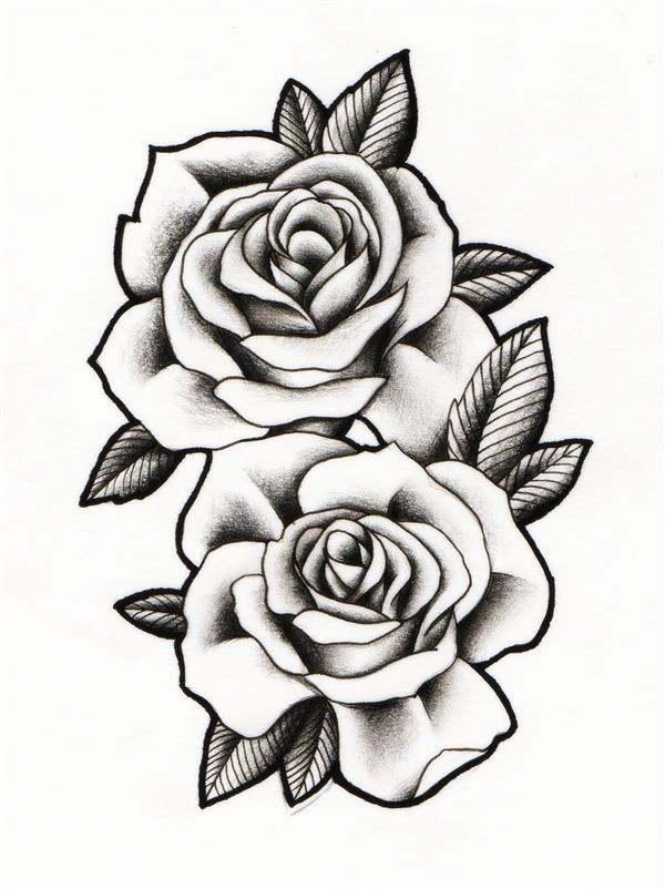 desenhos de rosas realistas