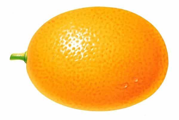molde de laranja