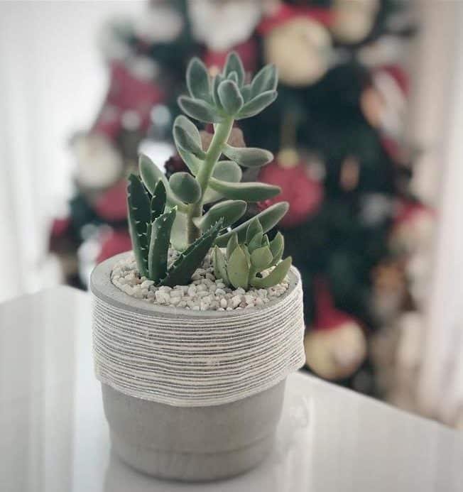 vaso com fita rustica