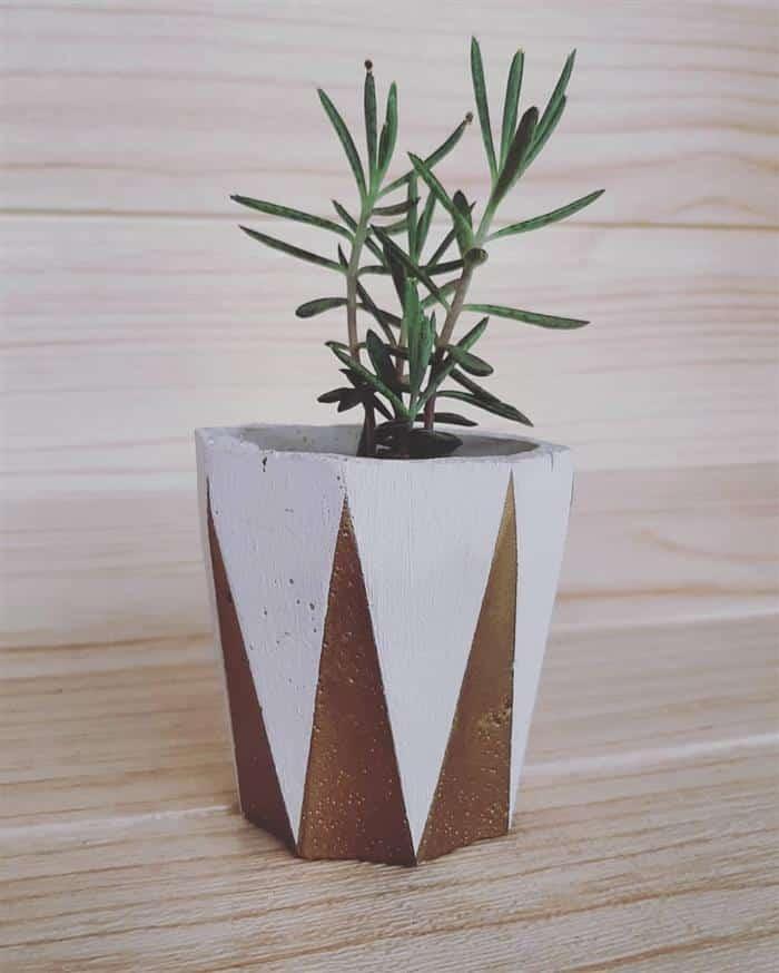 vasos de cimento alto