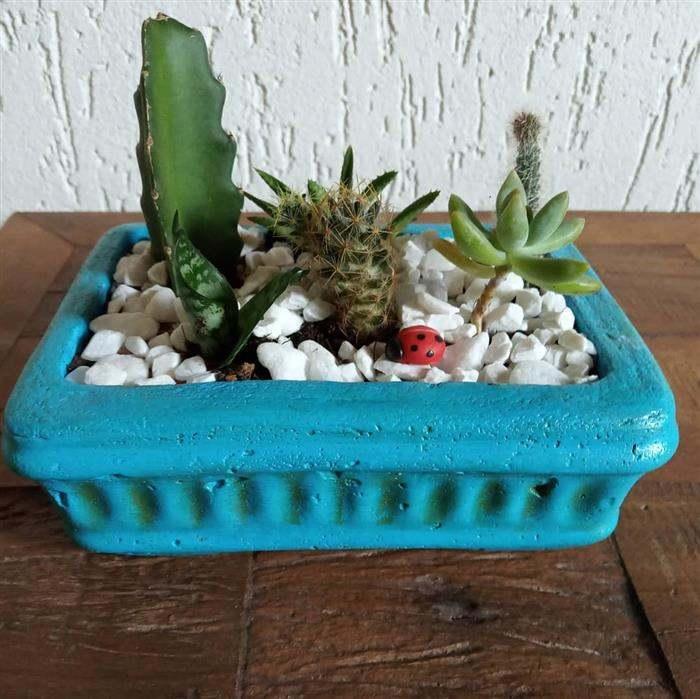 vasos de cimento coloridos