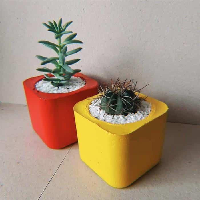 vasos de cimento pintados