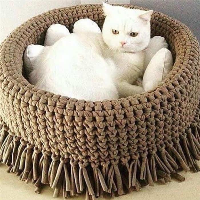 cesto de fio de malha para gatos