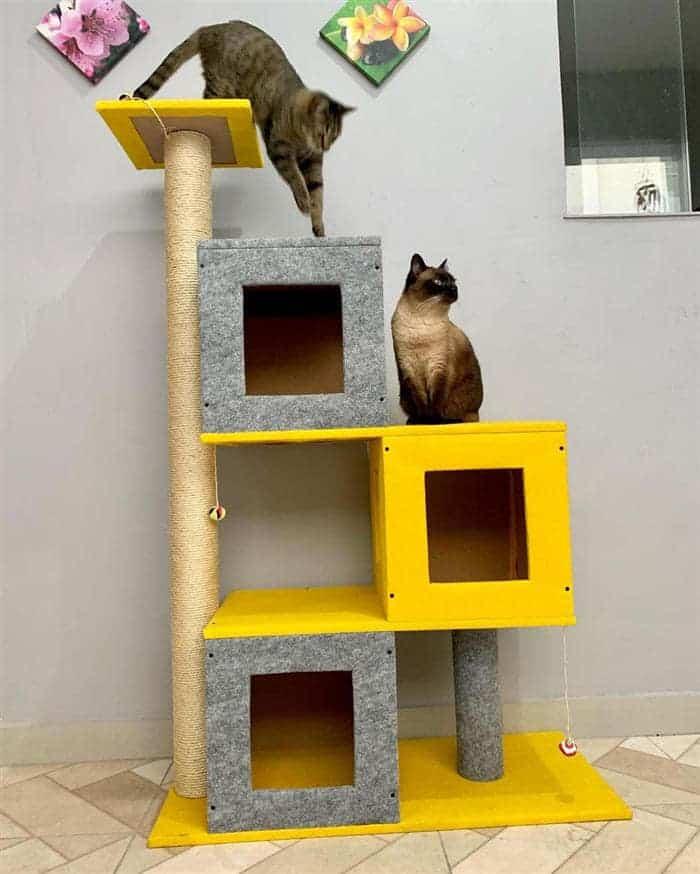 brinquedo de caixas para gatos