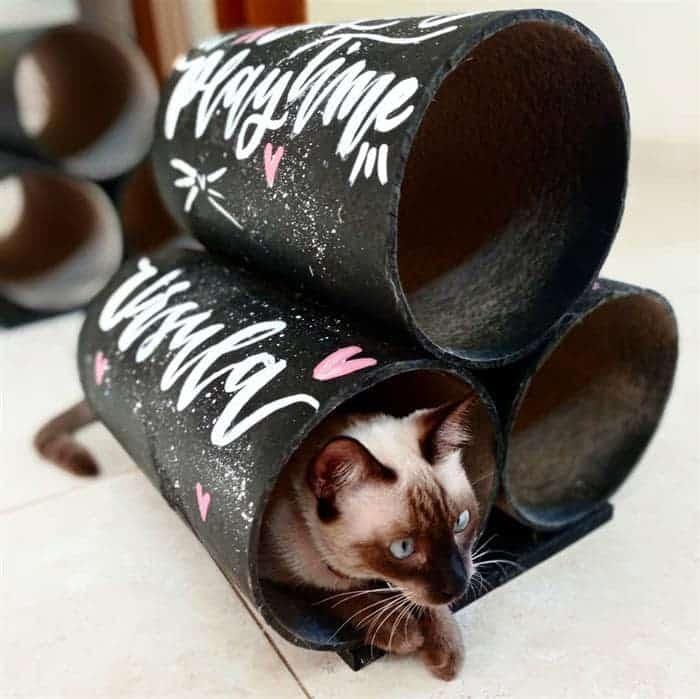 tunel de gato